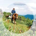 Конные прогулки в Прасковеевке